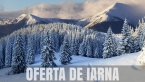 """SARBATORI  DE   IARNA LA  """" DRACULA LAND """""""